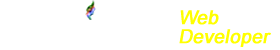 FlamyTech Web Developer Logo